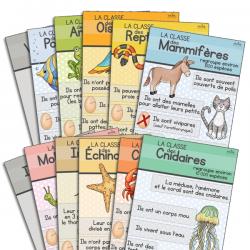 Affiches classification des animaux