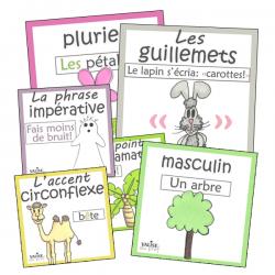 37 Affiches de français