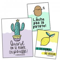 Affiches - jeux de mots (t-shirts) 2