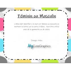 Féminin ou Masculin