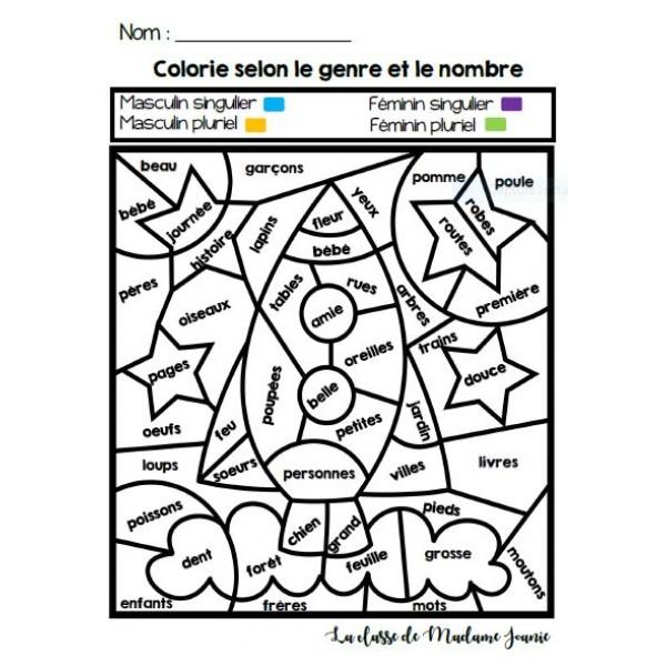 Colorie selon le genre et le nombre