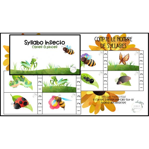 Syllabo insecto
