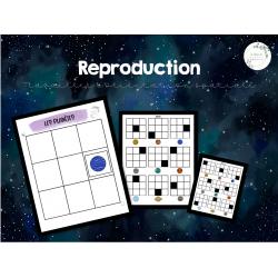 Reproduction - orientation spatiale