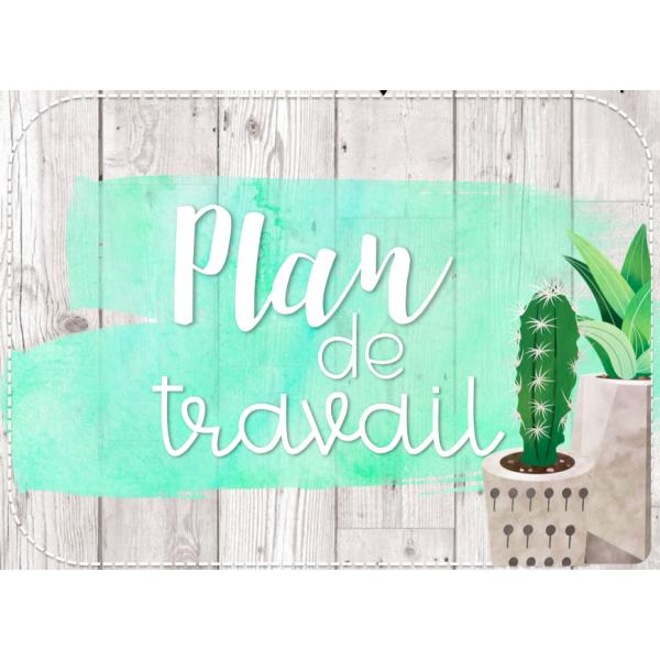 Plan de travail - cactus