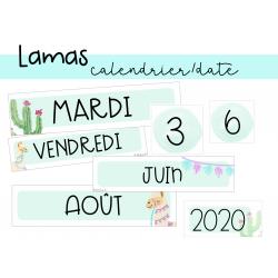 Calendrier - Lamas