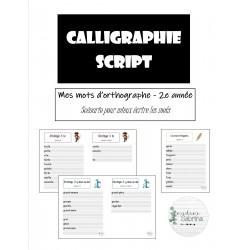 Calligraphie script- 2e année