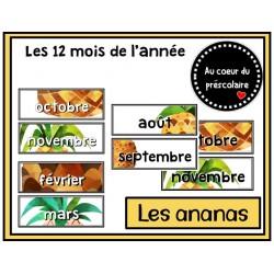 Mois de l'année - Ananas