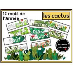 Mois de l'année - Cactus