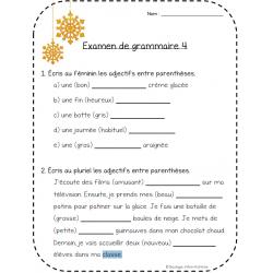 Examen de grammaire février