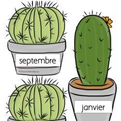 Anniversaires - Cactus