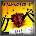 ArachnoFolie 3D ! Arts plastiques