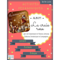 Activités pédagogiques La craie rose 2e/3e cycle