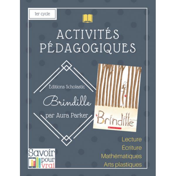 """Activité """"Brindille"""" 1er cycle"""