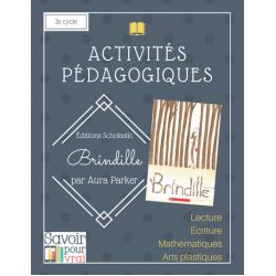 Activités Brindille 2e cycle