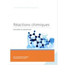 Cahier de laboratoire - réactions chimiques
