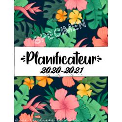 Cahier de planification 2020-2021