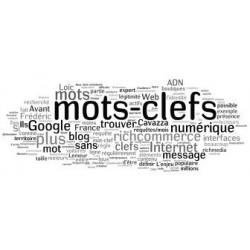 EXPRESSIONS et MOTS-CLES en ANGLAIS