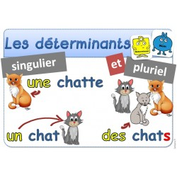 DETERMINANTS - ACTIVITE GRAMMAIRE - 19 - ANIMAUX