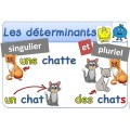 ADJECTIFS - DETERMINANTS - COULEURS - VIOLET