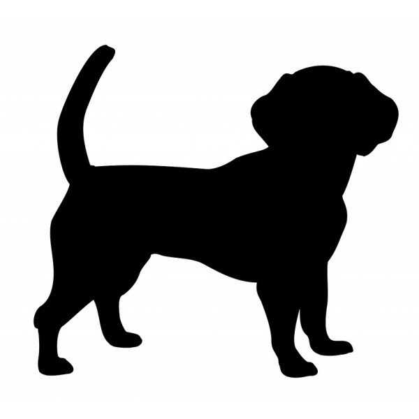 ANIMALS - ACTIVITY - ANIMAL SILHOUETTES