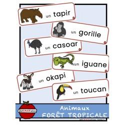 Mots étiquettes - Animaux de la forêt tropicale