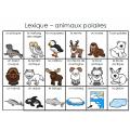 Mots étiquettes-Animaux polaires