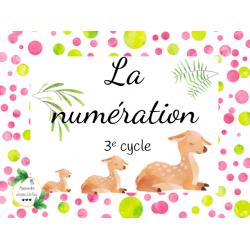 CAT - Numération