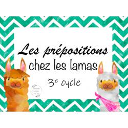 CAT - Les prépositions chez les lamas
