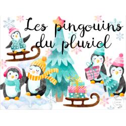 CAT - Les pingouins du pluriel
