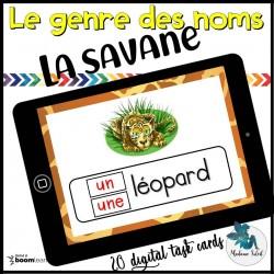 L'accord des mots en Safari BOOM CARDS
