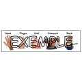 Combo anatomie / Body parts bundle