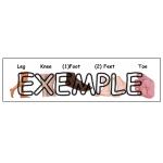 Jeu mémoire anatomie / Body parts memory game