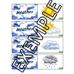 Weather memory/association game