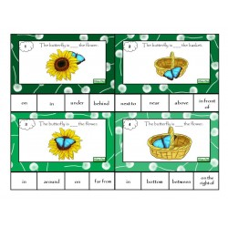 Prepostions - Task cards