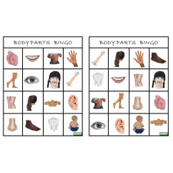 body parts - BINGO