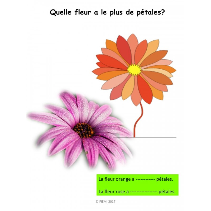 Pbf 4.02 check writing activity for students