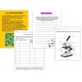 Les cellules, Expériences & Projets
