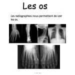 Les 6 systèmes du corps humain, Gr 5 science