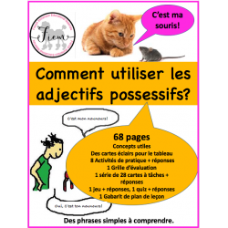 Les adjectifs possessifs, act/jeu/quiz 68 pages