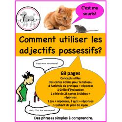 Les adjectifs possessifs, act/jeu/quiz 68 pages