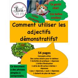 Les adjectifs démonstratifs, Act/jeu/quiz 54 pages
