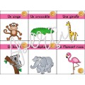 Cartes animaux
