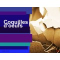 Coquilles d'oeufs