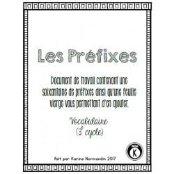 Préfixes