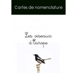 Cartes nomenclature oiseaux (français / anglais)