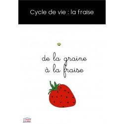 Cycle de vie de la fraise