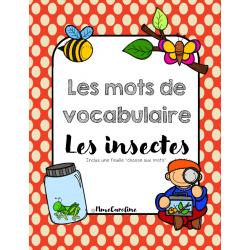 Mots de vocabulaire Insectes