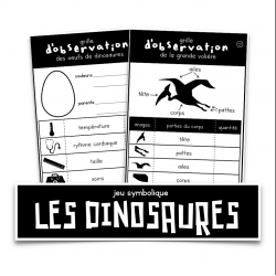 Les dinosaures - jeu symbolique