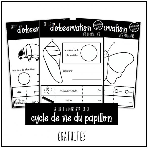 grilles d'observation du cycle du papillon