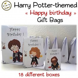 Wizard gift boxes for Harry Potter fans